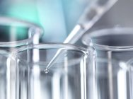 Pipeta que coloca la muestra en el tubo de ensayo durante el experimento en laboratorio . - foto de stock