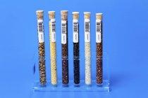 Rack d'échantillons d'aliments dans les éprouvettes . — Photo de stock