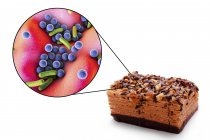 Illustration conceptuelle du morceau de gâteau et grossissement des bactéries d'infection d'origine alimentaire sur fond blanc . — Photo de stock