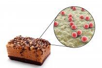 Pedazo de pastel con primer plano de la bacteria Staphylococcus, intoxicación alimentaria ilustración conceptual . - foto de stock