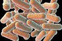 Colored rod-shaped Morganella bacteria, digital illustration. — Stock Photo