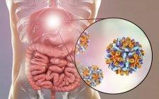 Ilustración digital del hígado y vista de cerca del virus de la hepatitis B . - foto de stock