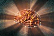 Konzeptionelle Illustration des explodierenden menschlichen Gehirns. — Stockfoto