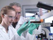Chercheurs manipulant des cultures de cellules souches en laboratoire pendant la recherche pharmaceutique . — Photo de stock