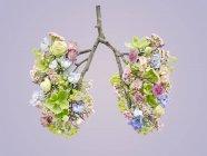 Flores de primavera que representan pulmones humanos sanos, plano conceptual del estudio . - foto de stock