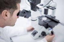 Scientifique examinant des cellules cultivées au microscope . — Photo de stock