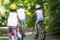 Вид сзади на детей в шлемах и на велосипеде в парке . — стоковое фото