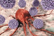 Digital artwork of T-lymphocyte cells attacking red cancer cell. — Stock Photo