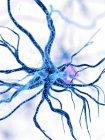 Ilustración digital de la célula nerviosa humana azul . - foto de stock