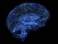 Ilustración del cerebro del plexo abstracto sobre fondo negro . - foto de stock