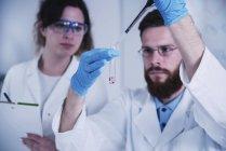 Молодые исследователи мужского и женского пола держат капельницу и пробирку в лаборатории . — стоковое фото
