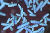 Bacterias de Citrobacter en forma de varilla amarilla, ilustración digital . - foto de stock