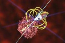 Ilustración digital conceptual de nanorobot médico atacando células cancerosas . - foto de stock
