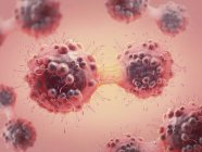 Digital 3d colored illustration of cancer cell in process of mitosis. — Stock Photo