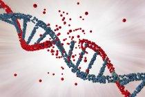 Daño a la molécula de ADN rojo de color, trastorno genético ilustración conceptual . - foto de stock