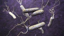 3d ilustración de patógenos del cólera en aguas oscuras contaminadas . - foto de stock