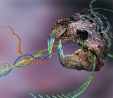 CRISPR-Cas9 complesso di editing genico nel DNA e nelle cellule, illustrazione concettuale . — Foto stock