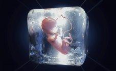 3D ілюстрація «кріоконсервованого плода» заморожена в кубик льоду. — стокове фото