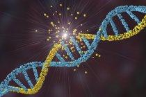 Daño por ácido desoxirribonucleico, ilustración digital con concepto de enfermedad, trastorno genético e ingeniería genética . - foto de stock