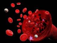 Vaisseau sanguin abstrait avec globules blancs et rouges, illustration numérique . — Photo de stock