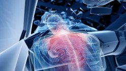 Рентгеновская иллюстрация риска травмы позвоночника при лобовой автокатастрофе, цифровые произведения искусства . — стоковое фото