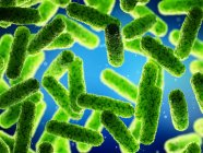 Abstract green bacteria, computer illustration. — Stock Photo