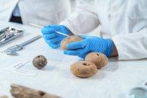Археолог, изучающий древние рыболовные артефакты . — стоковое фото