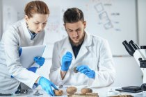 Arqueólogos analizando artefactos antiguos en laboratorio . - foto de stock