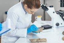 Jeune chercheuse en archéologie en laboratoire analysant un ancien outil à bois . — Photo de stock
