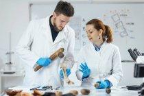 Chercheurs en archéologie en laboratoire reconstruisant l'utilisation de l'ancien outil de hache . — Photo de stock