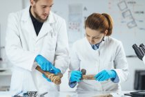 Archaeology researchers in laboratory reconstructing usage of ancient tools. — Stock Photo
