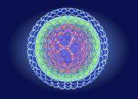 Estructura del virus de la hepatitis B, ilustración digital . - foto de stock