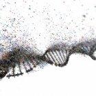 Daño al ADN, ilustración conceptual . - foto de stock