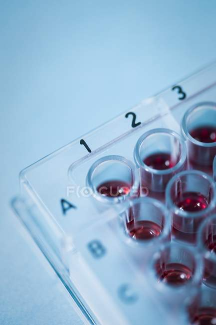 Close-up of liquid in multiwell sample tray. — Stock Photo