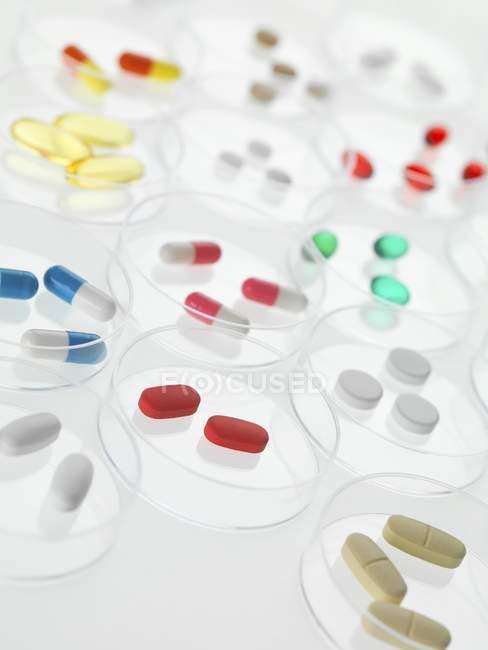 Pastillas en placas de Petri - foto de stock