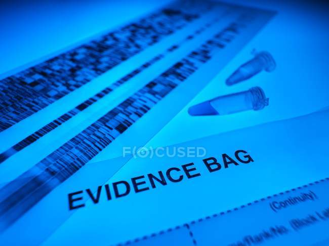 DNA samples, autoradiogram and forensic evidence bag on blue background. — Stock Photo