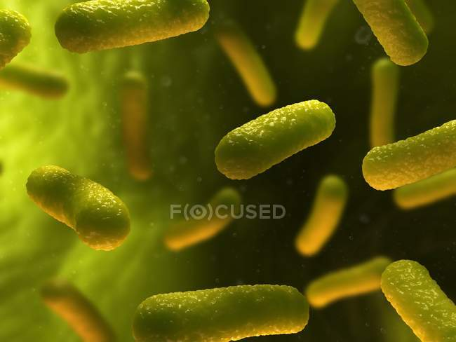 Bacterial infection spreading in bloodstream — Stock Photo