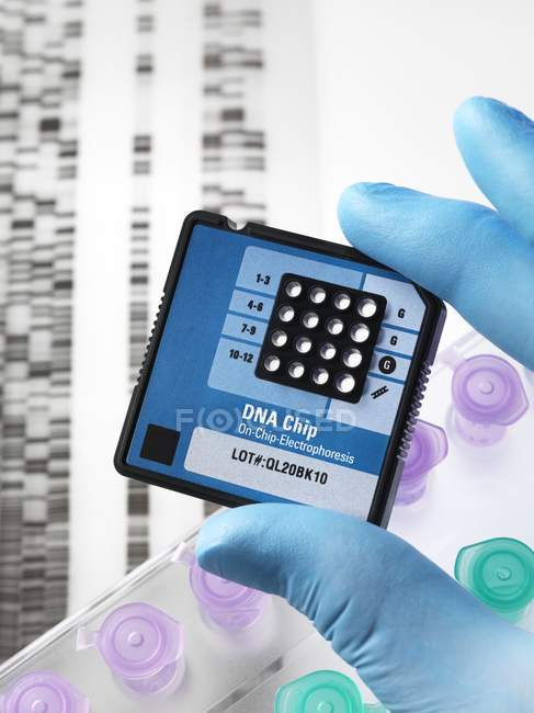 Genetics research toolkit — Stock Photo