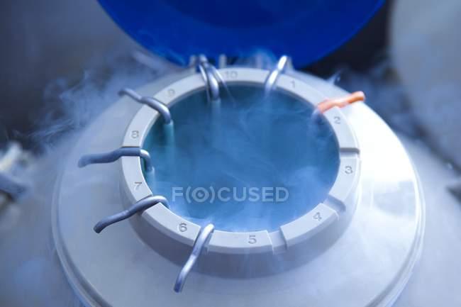 Криогенні людини яйце зберігання для екстракорпоральне запліднення. — стокове фото