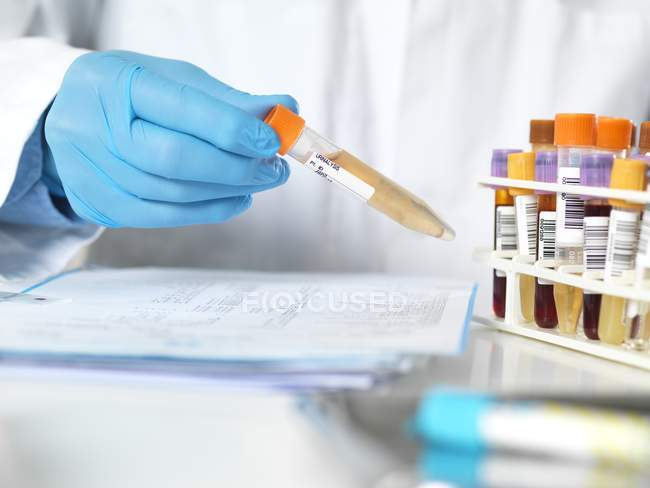 Cropped view of scientist holding sample for analytical testing. — Stock Photo