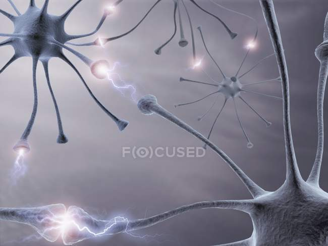 Neural network and connections — Stock Photo