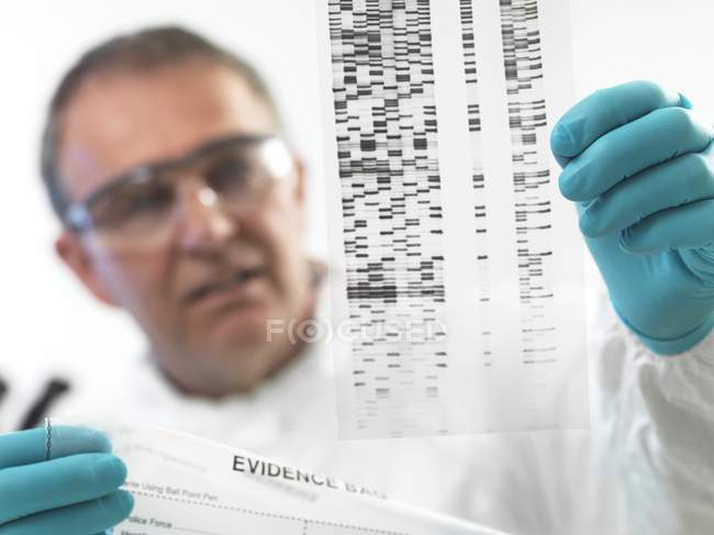 Forensic scientist examining DNA autoradiogram. — Stock Photo