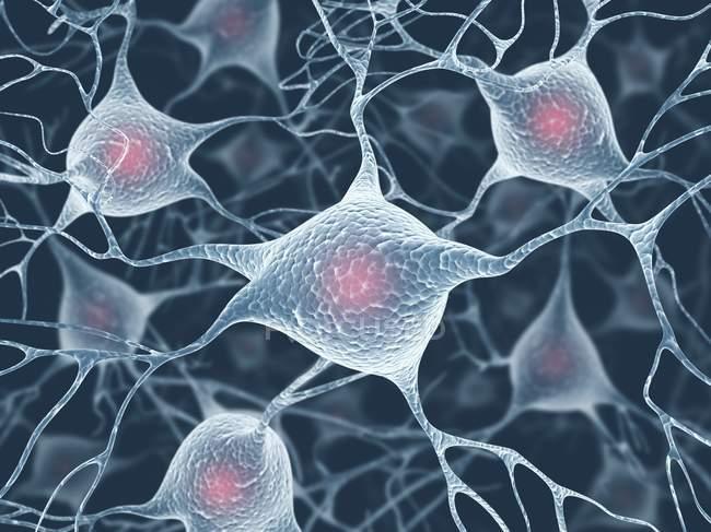 Collegamenti dell'asse tra le cellule — Foto stock