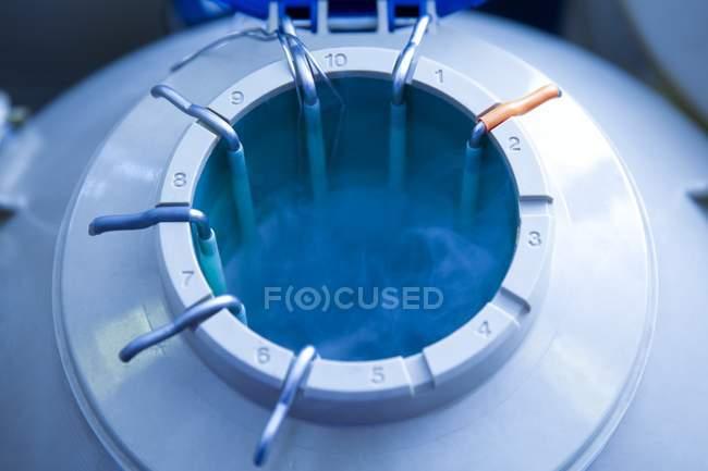 Stockage cryogénique ovule humain pour la fécondation In vitro. — Photo de stock