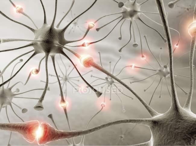 Axon-Verbindungen zwischen Zellen — Stockfoto