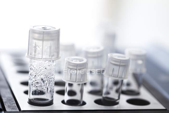 Close-up of sample tubes in in vitro fertilisation lab. — Stock Photo
