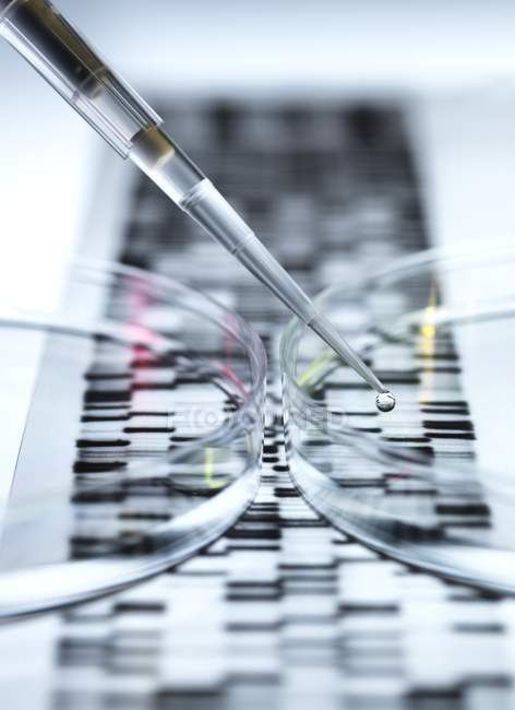 Close-up of petri dishes and dropping pipette for genetic research. — Stock Photo