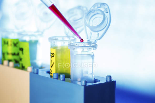 Close-up of pipetting into Eppendorf tubes. — Stock Photo
