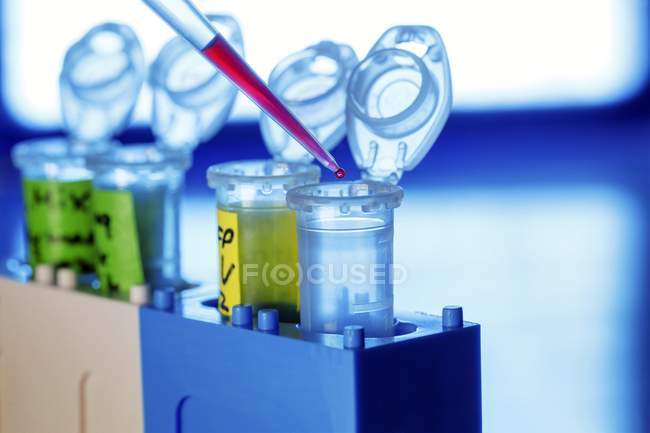 Pipetting liquid into test tubes, close-up. — Stock Photo