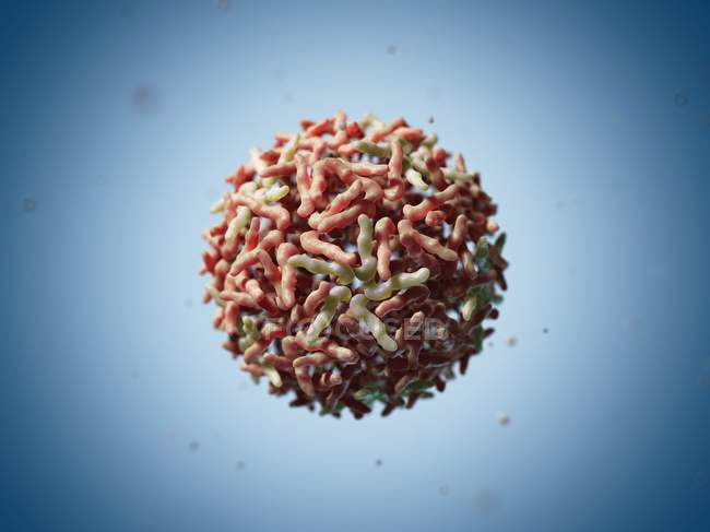 Particule du virus Sindbis — Photo de stock